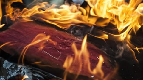 Burning_The_Books_-_credit_Katja_Ogrin